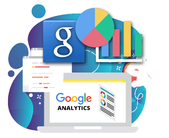 Google Analytics Tampa FL