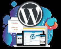Web Design Tampa