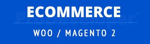 Responsive eCommerce Sites Tampa
